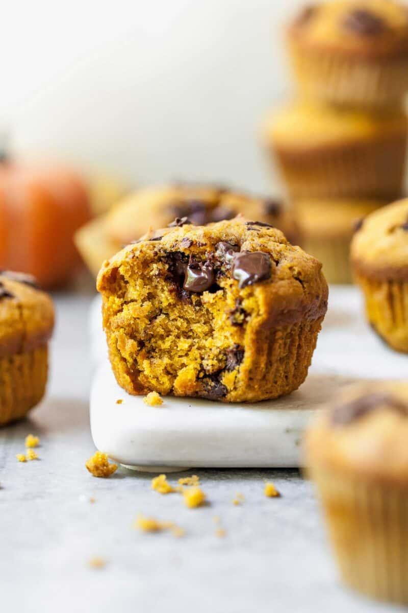Closeup shot of a pumpkin spice chocolate chunk muffin with a bite taken out of it
