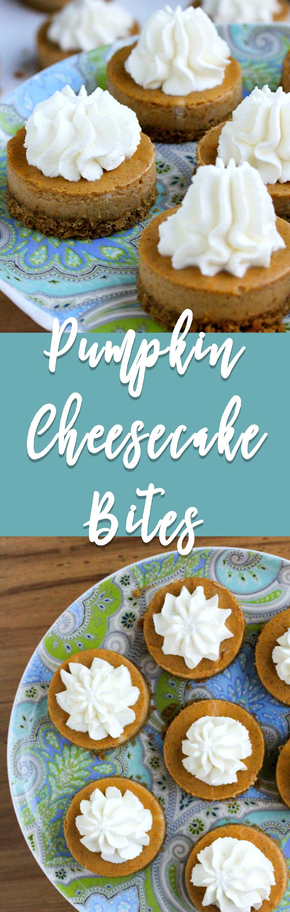 Pumpkin cheesecake bites have a buttery graham cracker crust with the perfect ratio of pumpkin cheesecake and topped with whipped cream.