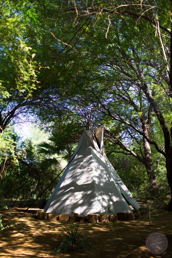 scottsdale-tablefortwoblog-29