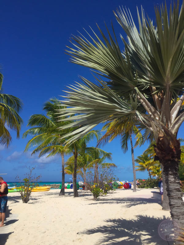 7-Day Eastern Caribbean Cruise on Regal Princess of Princess Cruises