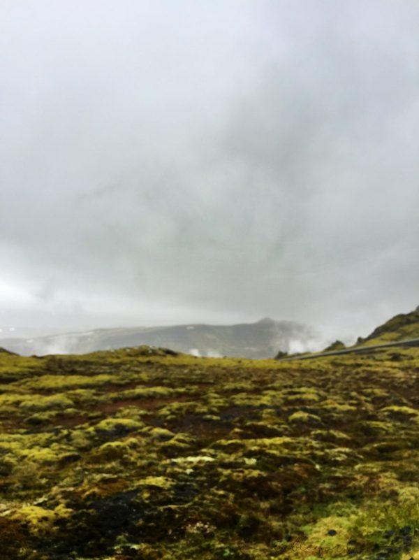iceland-in-5-days-day-2-tablefortwoblog-34