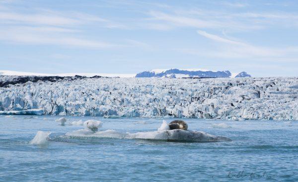 iceland-in-5-days-day-4-tablefortwoblog-9