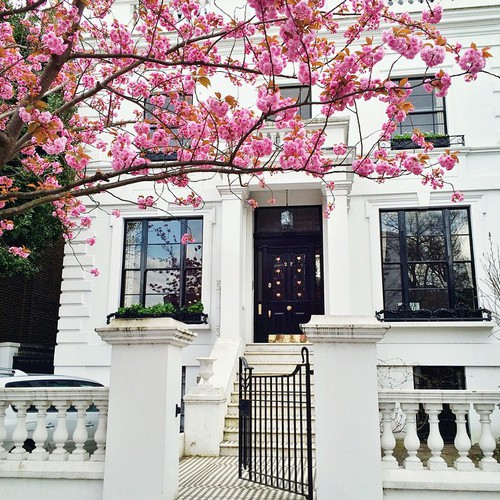 londonflowers