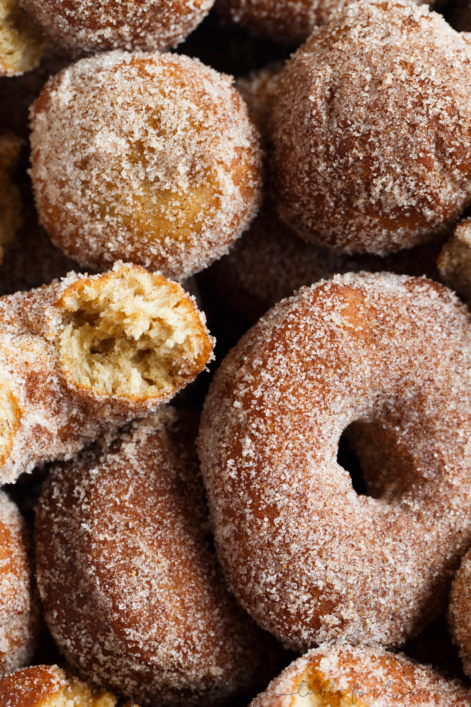 My idea of Fall is having a large plate of warm, fresh, homemade apple cider doughnuts with a cup of coffee in hand. This is the perfect cinnamon sugary treat full of apple cider flavor!