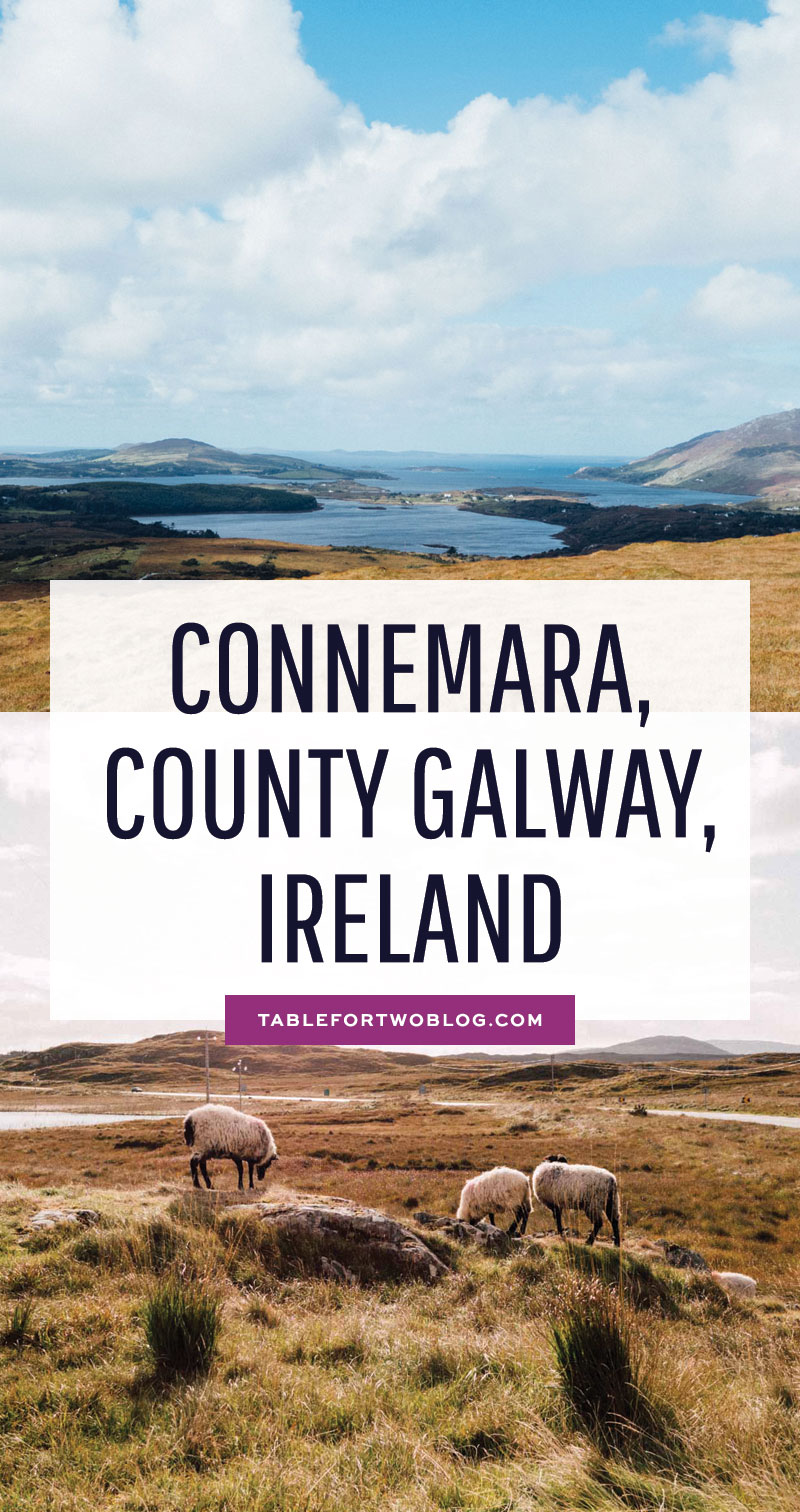 All the things we did driving around Connemara, Ireland, including where we stayed! Connemara Loop included Kylemore Abbey, Connemara National Park, and more! #connemara #ireland #irelandtravelguide #travelguide #iloveireland #irelandguide #irishscenery