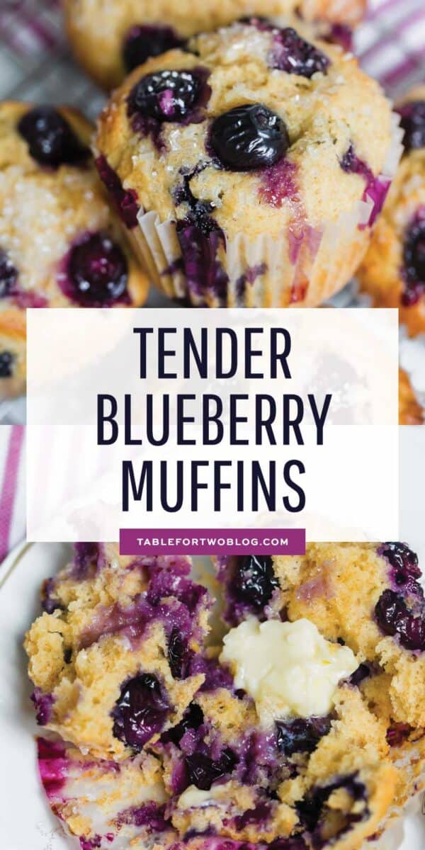 These tender blueberry overload muffins are literally overflowing and FILLED with fresh blueberries! They're so soft, tender, and just like straight out of a bakery! #blueberry #blueberries #blueberryrecipes #blueberrymuffins #muffinrecipe #muffins